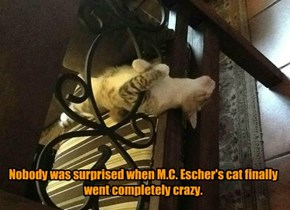 Nobody was surprised when M.C. Escher's cat finally went completely crazy.