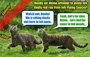 Dooby an' Nemo fawt Lustroid & Shmerg as long as dey could until teh Aliens started usin' unfair fiting teckneeks.. den Dooby an' Nemo ran as fast as dey could to escapes! But den a UFO started firing a deadly red ray at dem!