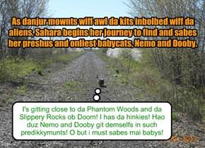 Sahara puts herself into danjurz way to sabes her babycats, Nemo and Dooby, frum da aliens!