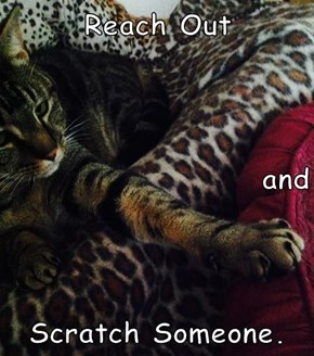 Reach Out and Scratch Someone.