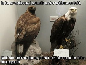 As far as eagles go, I actually prefer golden over bald.  (And you can't revoke my patriot card, because I'm doing that myself!)