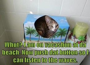 Whut? I am on vacashun at da beach. Now push dat button so I can listen to the waves.