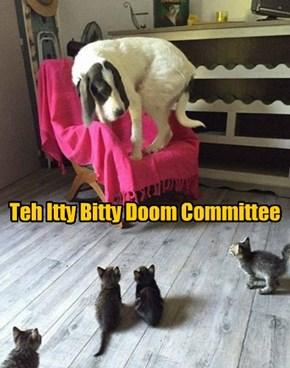 Doom Day!
