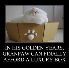 IN HIS GOLDEN YEARS, GRANPAW CAN FINALLY AFFORD A LUXURY BOX