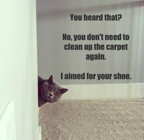 You heard that?  No, you don't need to clean up the carpet again.  I aimed for your shoe.