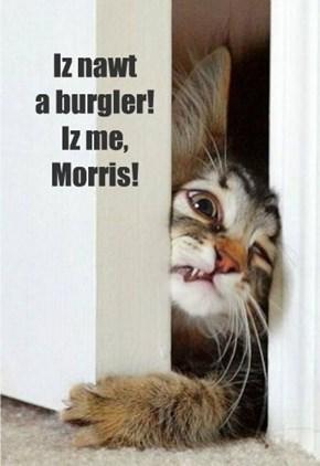 Iz nawt  a burgler! Iz me,  Morris!