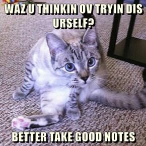 WAZ U THINKIN OV TRYIN DIS URSELF?  BETTER TAKE GOOD NOTES