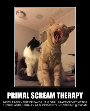 PRIMAL SCREAM THERAPY
