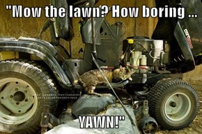 """Mow the lawn? How boring ...  YAWN!"""