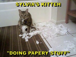 "SYLVIA'S KITTEH  ""DOING PAPERY STUFF"""