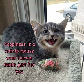 happiness is a catnip mouse your human made just for you