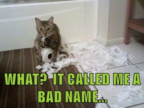 WHAT?  IT CALLED ME A BAD NAME...