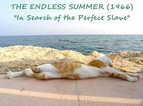 "THE ENDLESS SUMMER (1966)            ""In Search of the Perfect Slave"""