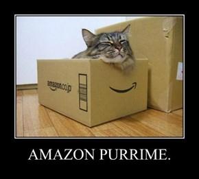 AMAZON PURRIME.