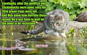 Eventually, after the goldfish and sticklebacks were gone, only the little green frogs were left.  And Max knew how horrible those tasted. He'd just have to wait for the pond to be restocked.