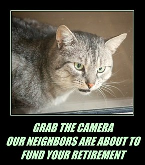 GRAB THE CAMERA OUR NEIGHBORS ARE ABOUT TO  FUND YOUR RETIREMENT