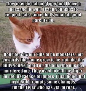 They used to call me Tiger and I have a message for you. Teach your kids to respect cats, since that's what all good parents do.  Don't teach your kids to be monsters, not cowards like some grow to be, not like the bully you've heard of, the one who one d