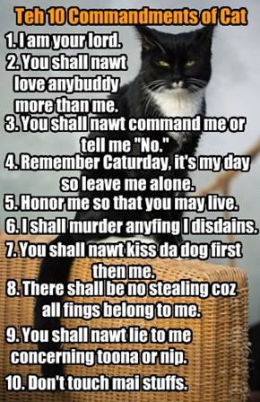 Teh 10 Commandments of Cat