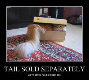 TAIL SOLD SEPARATELY