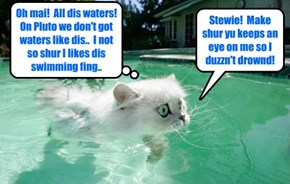 Kamp 2105: Alien Shmerg tries teh Kamp pool for teh first time an' has sekond thawts abowt teh swimming aktibity..