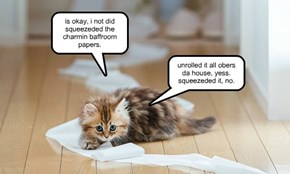 is okay, i not did squeezeded the charmin baffroom papers.