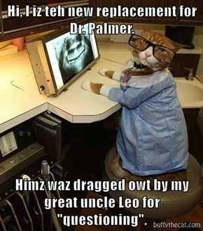 """Hi, I iz teh new replacement for Dr. Palmer.  Himz waz dragged owt by my great uncle Leo for """"questioning""""."""