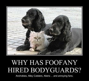 WHY HAS FOOFANY HIRED BODYGUARDS?