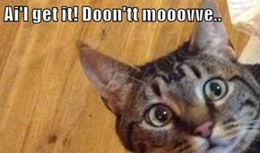 Ai'l get it! Doon'tt mooovve..