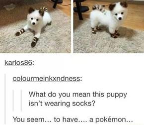 How to Get Pokémon IRL