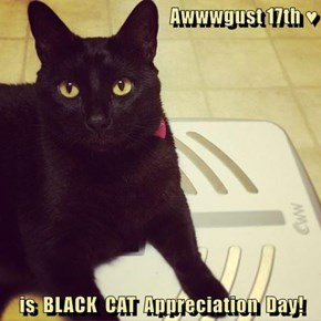 Awwwgust 17th ♥  is  BLACK  CAT  Appreciation  Day!