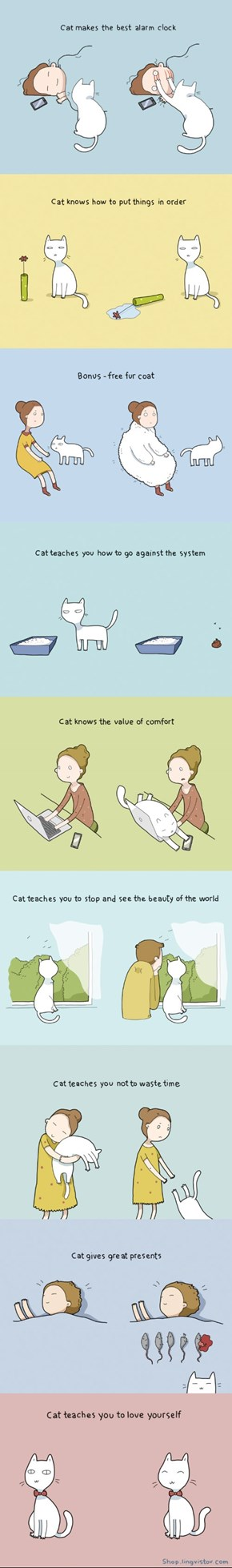 10 Benefits of Having a Cat