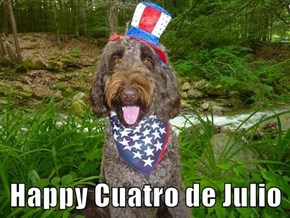 Happy Cuatro de Julio