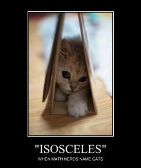 """""""ISOSCELES"""""""