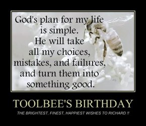 TOOLBEE'S BIRTHDAY