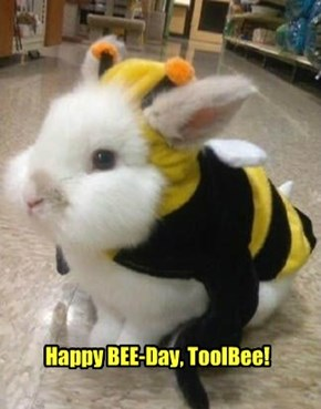 Happy Bee-Day from NawtyKitty! (And a little Bunny Bee).