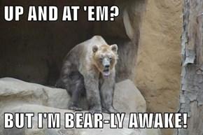 UP AND AT 'EM?  BUT I'M BEAR-LY AWAKE!