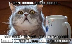 """""""Here, human, human, human ...  Look what kitty's got ... just for his special human! COFFEE! Oh, nom nom nom nom nom!"""""""