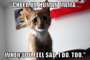 """CHEER UP, HUMAN MAMA ...  WHEN YOU FEEL SAD, I DO, TOO."""