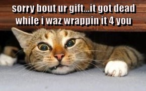 sorry bout ur gift...it got dead while i waz wrappin it 4 you