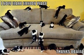 I NOW MAKE MINION WAGE   THANKS OBAMA
