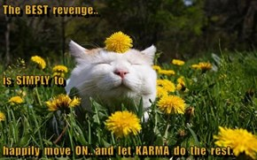 The  BEST  revenge.. is  SIMPLY  to  happily  move  ON.. and  let  KARMA  do  the  rest.
