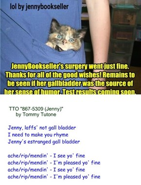 """Jenny deGall""/Get well soon! (TTO ""867-5309 (Jenny)"" by Tommy Tutone)"