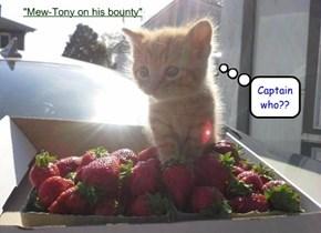 Mew-Tony on his bounty