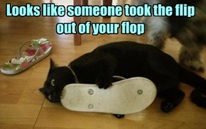 Looks like someone took the flip out of your flop