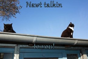 Nawt talkin  to you!