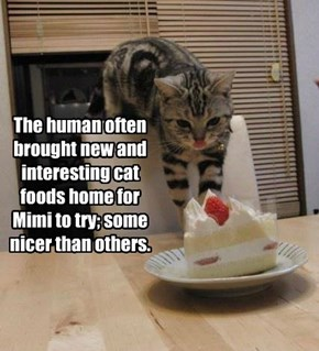 The human often brought new and interesting cat foods home for Mimi to try; some nicer than others.
