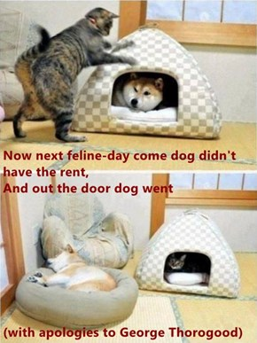 Now next feline-day come dog didn't have the rent,                                         And out the door dog went (with apologies to George Thorogood)
