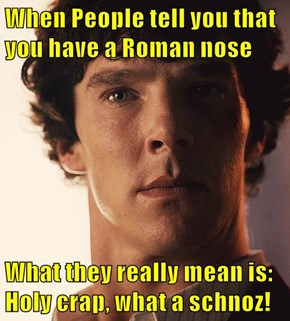 When People tell you that you have a Roman nose  What they really mean is:               Holy crap, what a schnoz!