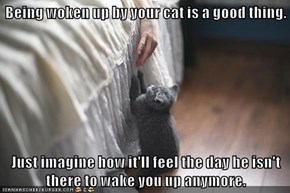 Being woken up by your cat is a good thing.  Just imagine how it'll feel the day he isn't there to wake you up anymore.
