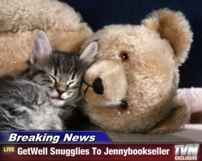 Breaking News - GetWell Snugglies To Jennybookseller